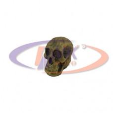 Колпачки на диски -  металл череп  (латунь)